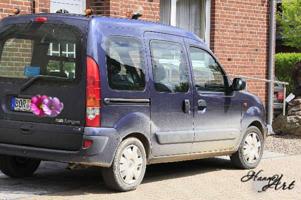 auto9
